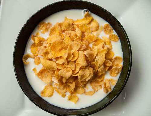 007 Lunch : Yogurt + water + cornflakes