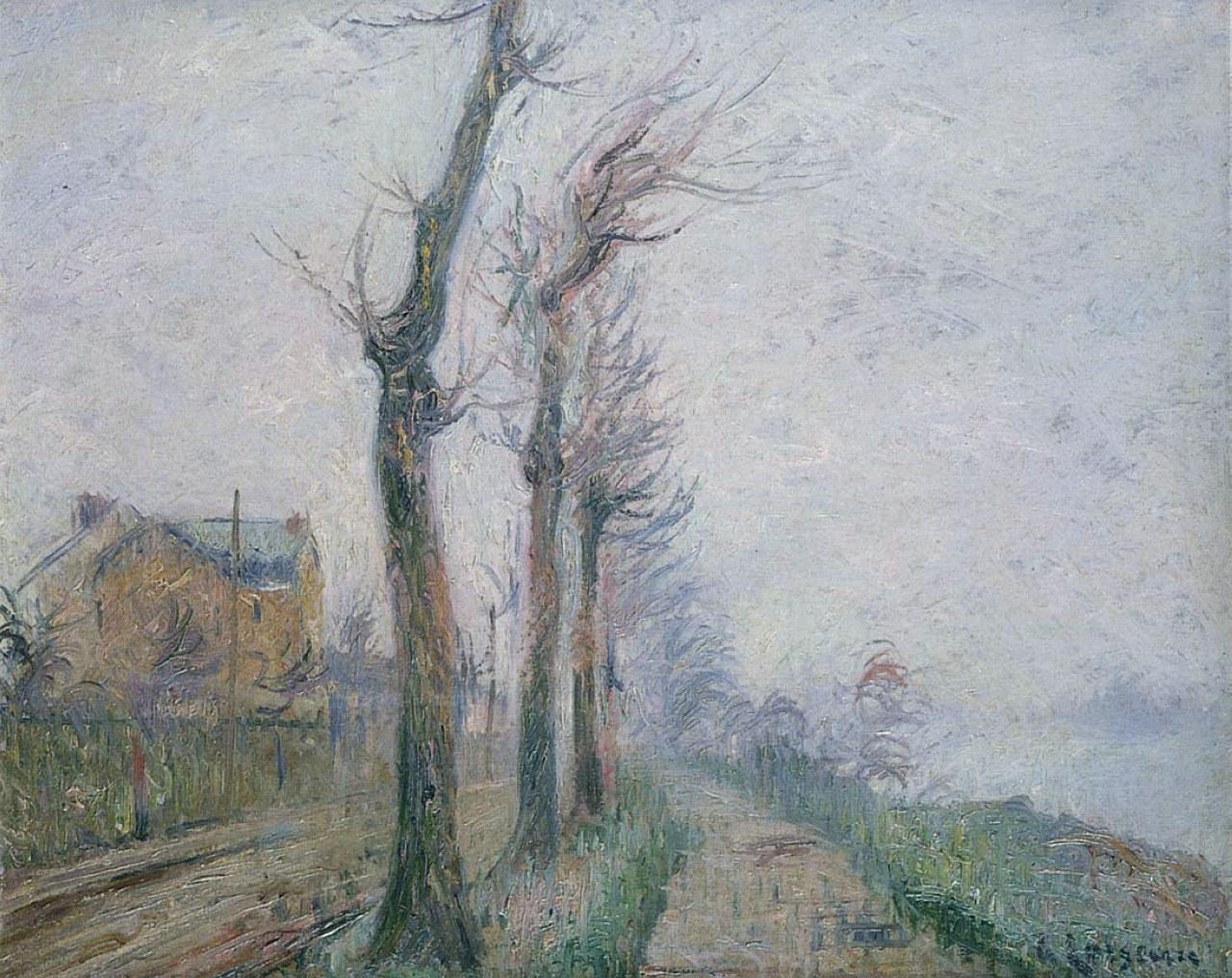Loiseau1