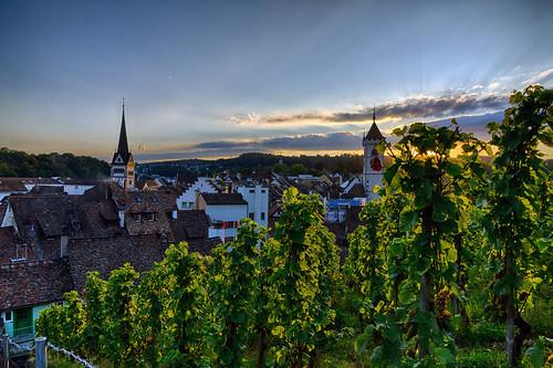 sunset schweiz switzerland vineyard sonnenuntergang sony schaffhausen nik alpha 77 hdr weinberg hdrefex slta77v sal1650f28