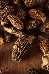 Raw Organic Morel Mushrooms