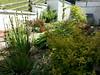 Summer 2015 Back garden and views