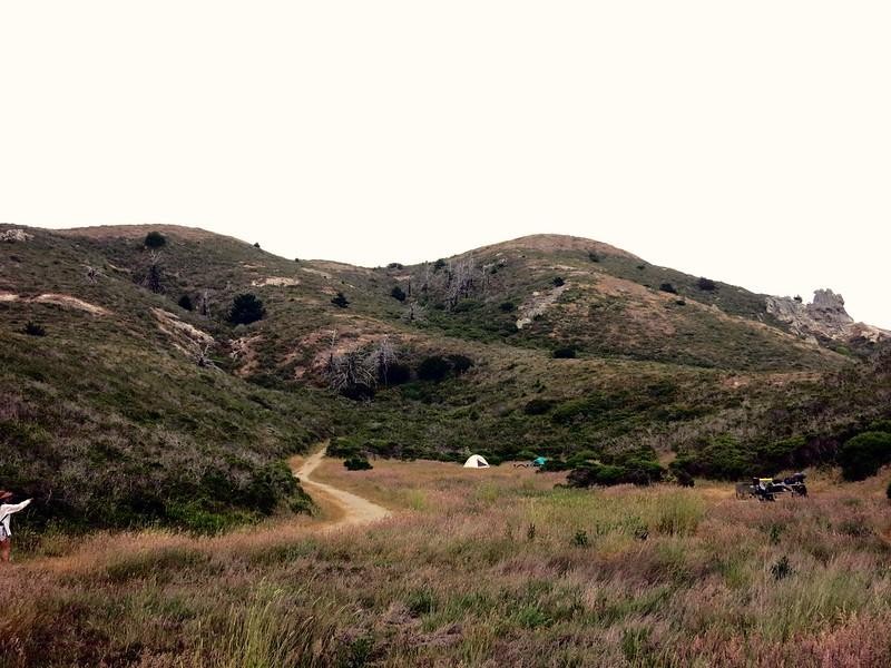Hillside, Point Reyes