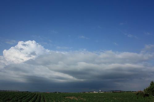 Saint-Sylvestre-Cappel, le 07 juin 2014