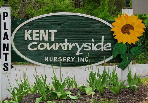 plants sign greenwhite kentcountryside carmelny woodsunflower montijoverdeamarelo orangebrowngreen spring2014 nurserygardencenter