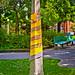 Lamp Post Warmer -   Ottawa 07 14 by Mikey G Ottawa