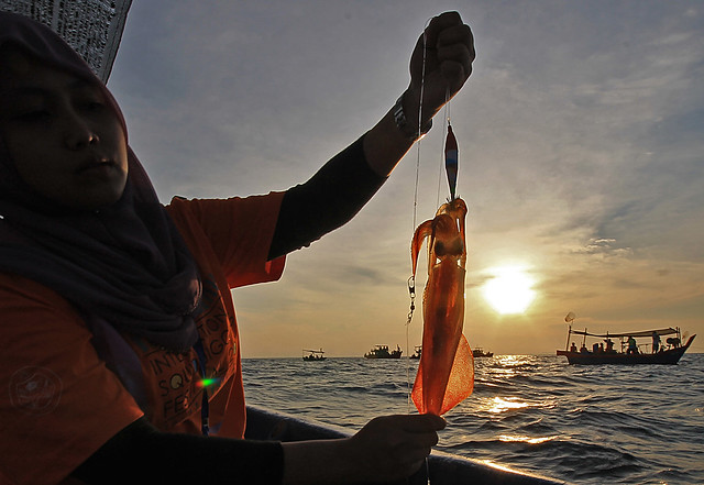 Terengganu International Squid Jigging Festival 2014
