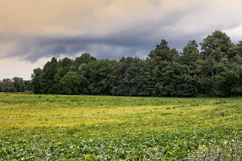 07-14 bike ride-4860-Edit