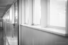 Windows along Corridor