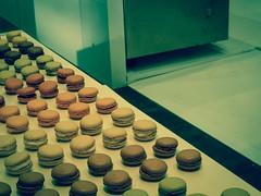 Macarons - Photo of Tremblay-en-France