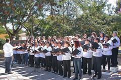 12/08/2014 - DOM - Diário Oficial do Município