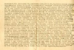 VI/7.g. Schwartz Ilona és társa internálására javaslat előterjesztése