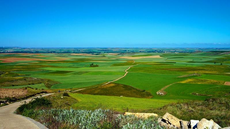 """Camino de Santiago Walk: """"Tierra de Campos"""""""
