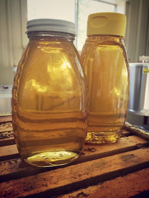 Comanche Creek honey Sept 2014