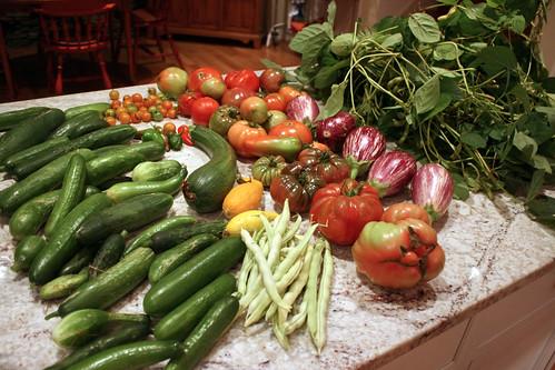 Harvest 9393
