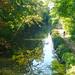 Small photo of Basingstoke Canal in Aldershot