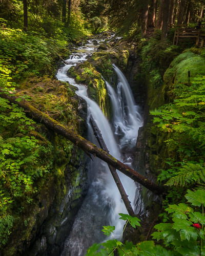 travel green nature water beauty america flow waterfall washington rainforest pentax olympicnationalpark northeast solducfalls jorgegomez k5iis