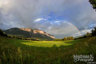Regenbogen | Projekt 365 | Tag 258