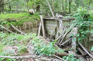 Trammell mill ruins