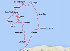 Route Map -- 21 Sept 2014 Pelagic with Local Patch Birding Tours