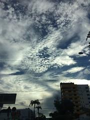 Sky. By Leticia Coelho.