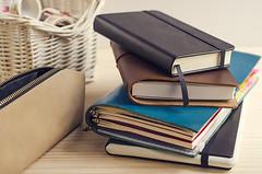 Mis cuadernos para 2017