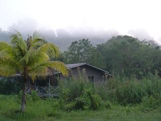 Alojamiento en el río Kinabatangan (Borneo, Malasia)