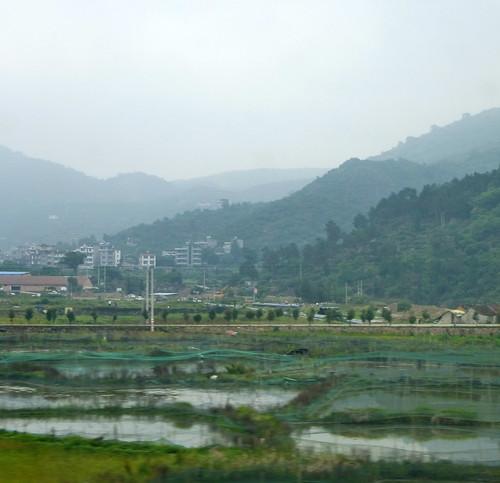 Zhejiang-Wenzhou-Ningbo-train (20)