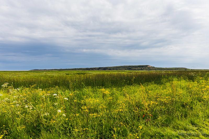 Hengistbury Head from Stanpit Marsh