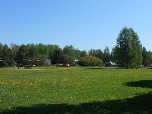 Nurminäkymä, Pohjois-Tapiola Espoo 22.5.2014