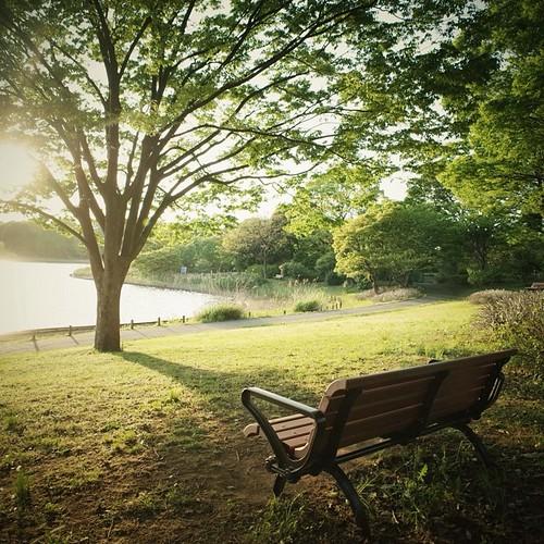 昭和記念公園 Tokyo