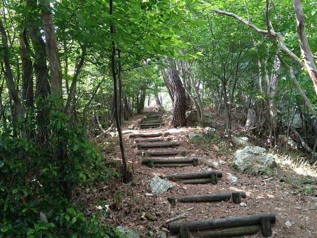 釜ヶ谷山 登山道 山頂直下の丸太階段