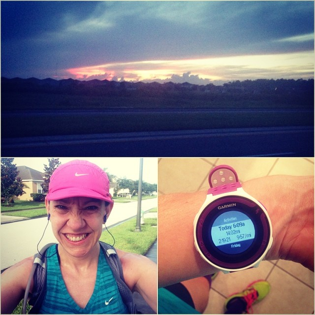 14 disgustingly humid miles done (I wish that gigantic rain cloud would have just rained!). I met a turtles, gave dirty looks to more than 10 bikers riding on the sidewalk, and didn't fall. #chimarathon #teamrmhc #wooendorphins