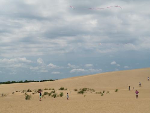 Both kites