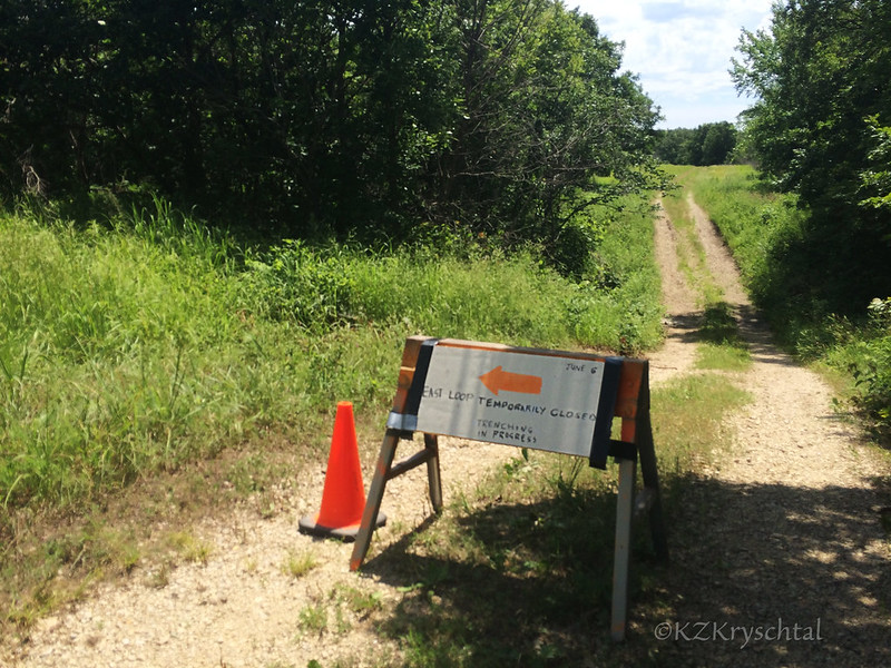 IMG_8185TrailClosed