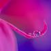 Hold Me by Elizabeth_211