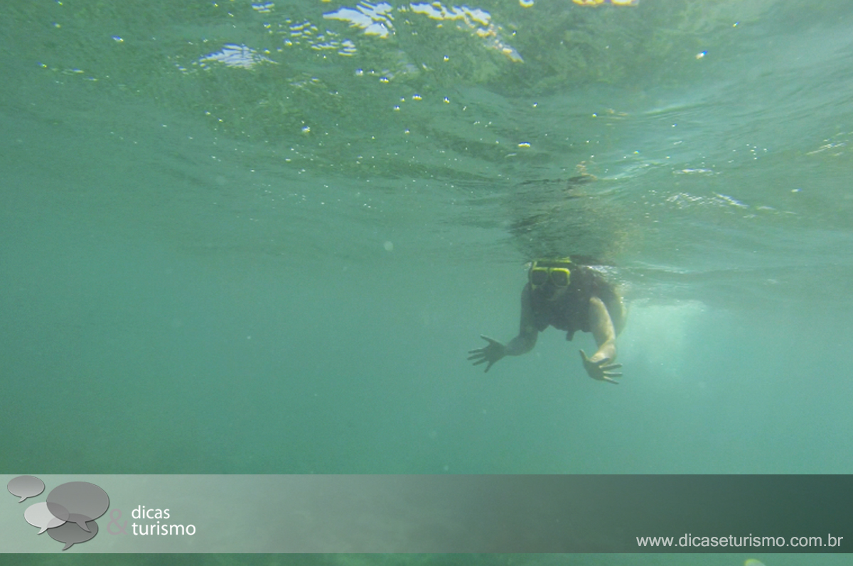 Aruba Tour1 7