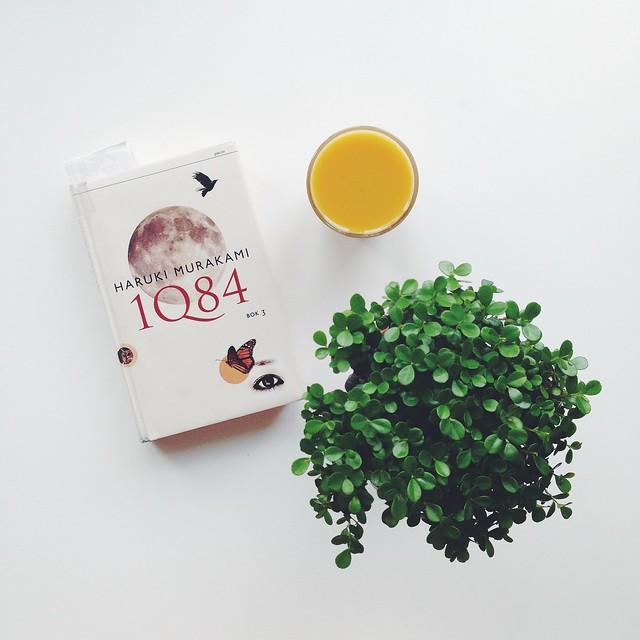 1q84.