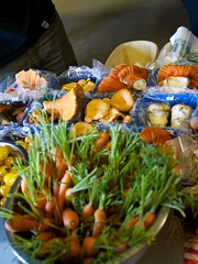 Wild Mushrooms, Matane Public Market