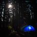 Saturday Night Lights by LukeDetwiler