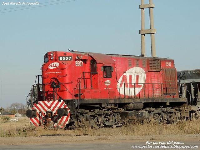 DSCN6505