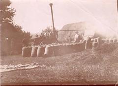 Les sacs de blé