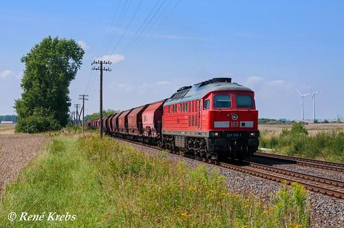 233 510 (06.08.13) Biendorf