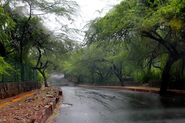 Dr. Karnwal Road