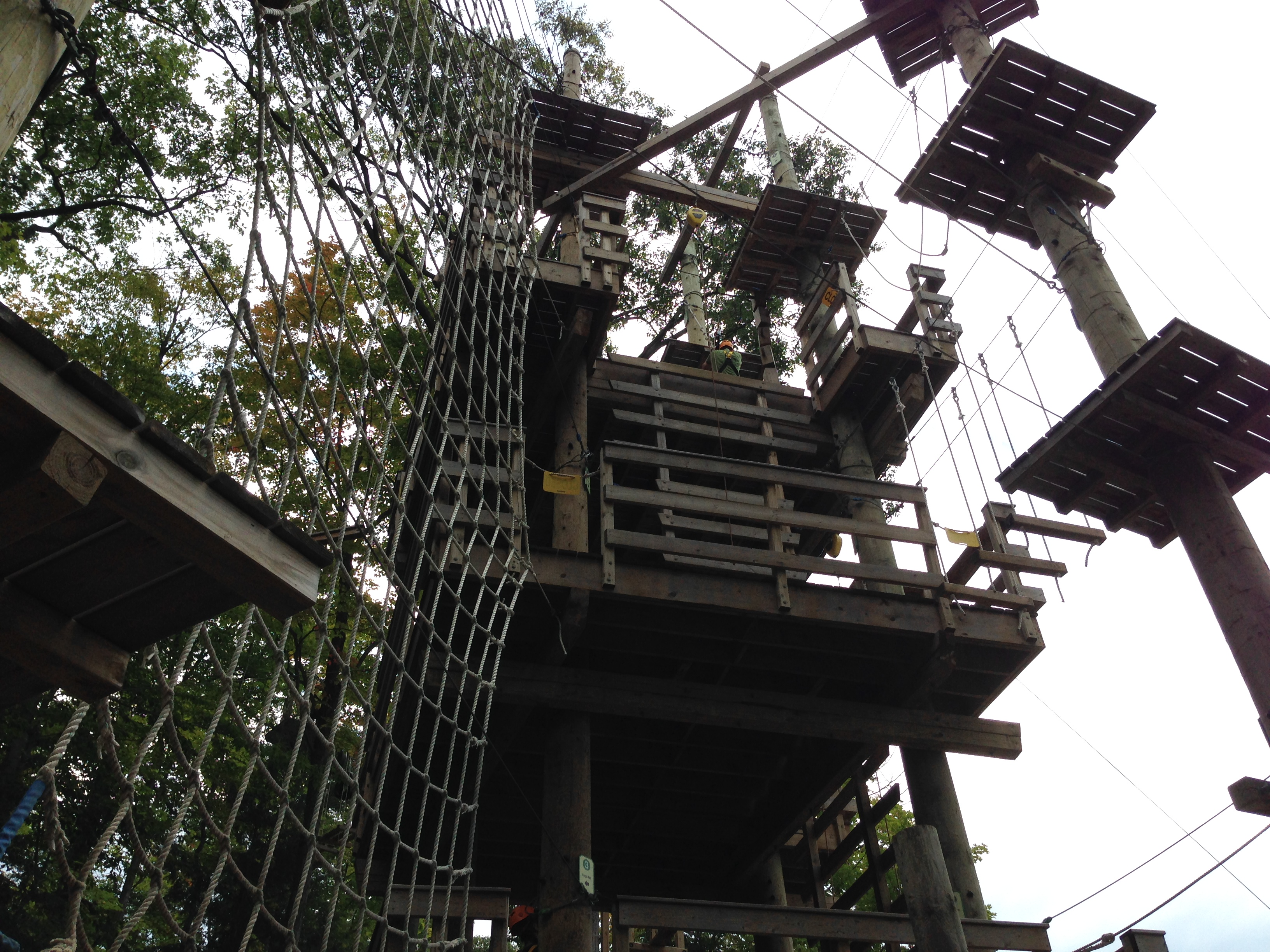 Blue Mountain Timber Challenge High Ropes