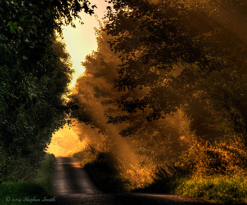 uk morning autumn trees shadow england sunlight mist colour landscape gold early nikon scenery northamptonshire september countrylane hdr latesummer 2014 grangeroad d80 geddington
