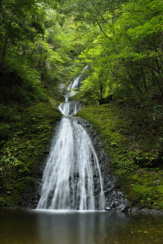 green water forest waterfall nikon 愛知 aichi 緑 滝 森 shinshiro 新城 atera d3s 阿寺 afszoomnikkor2470mmf28ged 阿寺の七滝 ateranonanataki