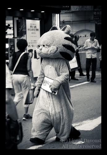 Garfield in Seoul