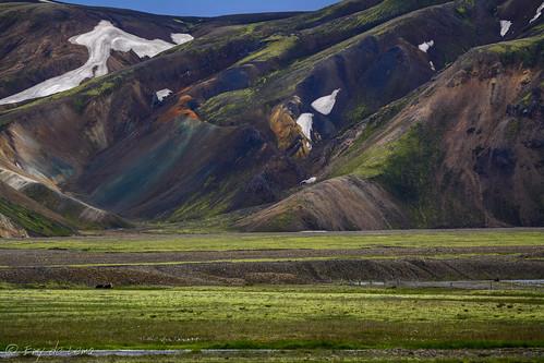 colors landscape iceland islandia beautifulcolors suðurland worldlocation worlddestinations landmanaulagar