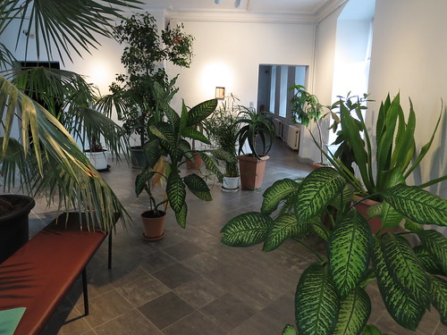 M.A.: Parlour of collected plants