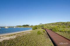 Jabiru Island boardwalk